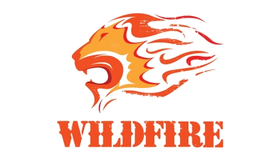 Wild Fire Lion Logo