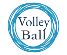 Volleyball Logaster logo