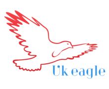 UK Eagle Logaster logo