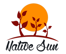 Native Sun Logaster Logo