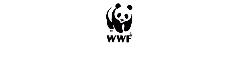 ᐈ Logotipos De Ecologia 20 Exemplos De Emblemas Dicas De